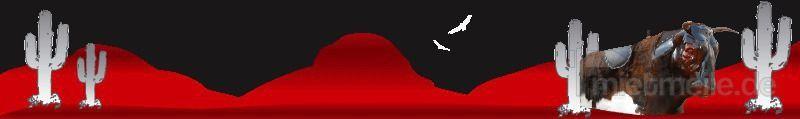 Bullriding mieten & vermieten - Bullriding, Rodeostier leihen, mieten, verleih in Göppingen