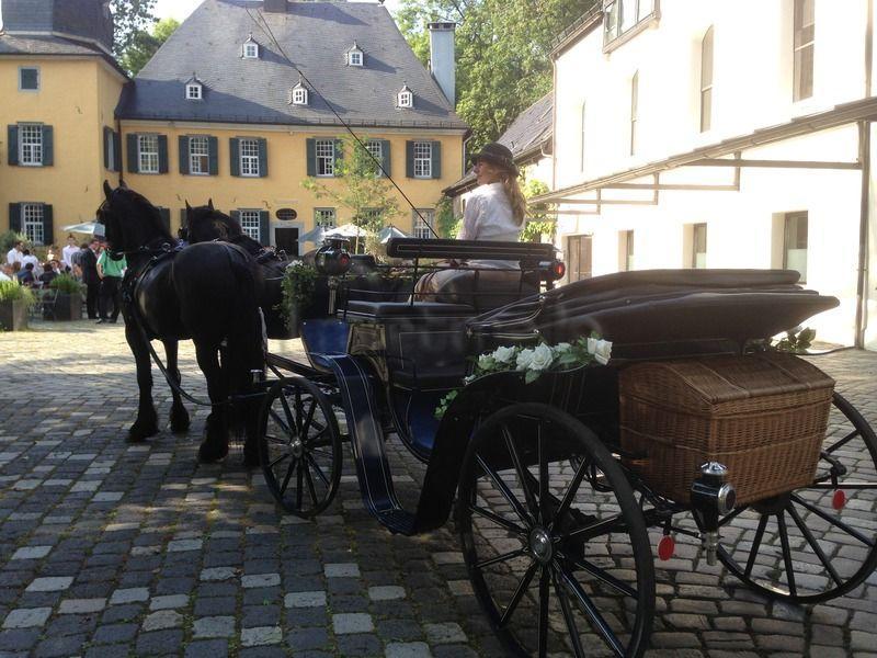 Kutsche mieten & vermieten - Kutschfahrten zu jedem Anlass in Solingen