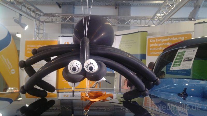 Clown mieten & vermieten - Minnie Mouse Luftballon Figuren & Kindershows in Herbertingen
