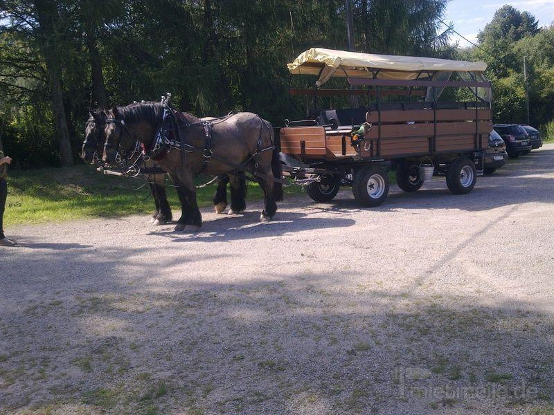 Kutsche mieten & vermieten - Reiten-Fahren in Hagen