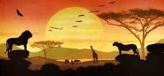 Kulissen mieten & vermieten - Sonnenuntergang in der Savanne Kulisse, Kulisse, Savanne, Sonne, Sonnenuntergang, Afrika, afrikanisch, Tiere, Wildtiere in Kamp-Bornhofen