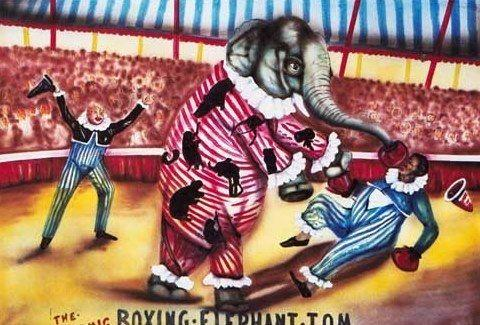 Kulissen mieten & vermieten - Zirkus Boxing Elephant Kulisse, Kulisse, Zirkus, Elefant, Cirkus, Manege, Event, Messe, Veranstaltung, leihen, mieten in Kamp-Bornhofen
