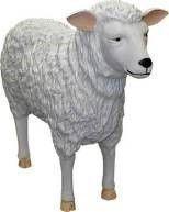 Dekofiguren mieten & vermieten - Schaf Figur, Schaf, Lamm, Figur, Tier, Weide, Schäfchen, Wolle, Hausschaf, Bauer, Bauernhof, Stall, Dekoration, Event in Lahnstein