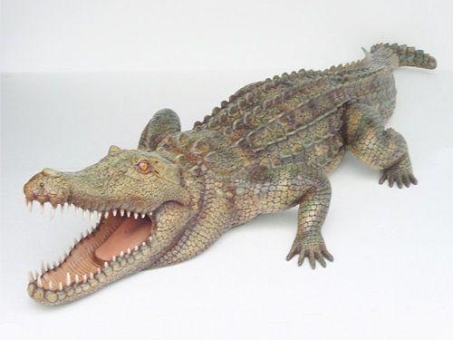 Dekorationsservice mieten & vermieten - Alligator Figur, Alligator, Figur, Wildtier, Tier, Krokodil, Everglades, Event, Messe, Veranstaltung, leihen, mieten in Lahnstein