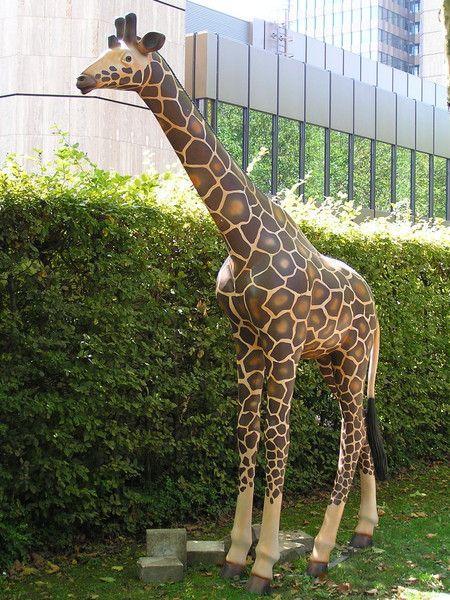 Dekorationsservice mieten & vermieten - Giraffen Figur XXL, Giraffe, Figur, Dekoration, Afrika, afrikanisch, Savanne, Tier, Großtier,  Event, Messe in Kamp-Bornhofen