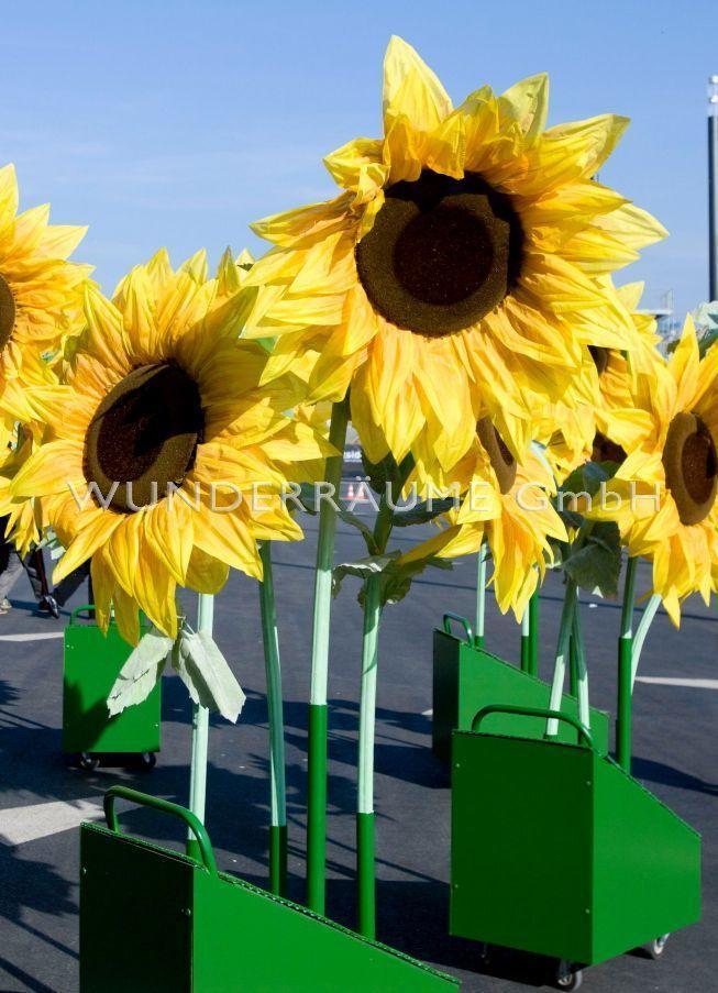 Saisonale Dekoration mieten & vermieten - Sonnenblumen XL  -  Riesenblumen  Sommer WUNDERRÄUME GmbH vermietet: Dekoration / Kulisse für Event, Messe, Veranstaltung, Incentive, Mitarbeiterfest, Firmenjubiläum in Lichtenstein/Sachsen