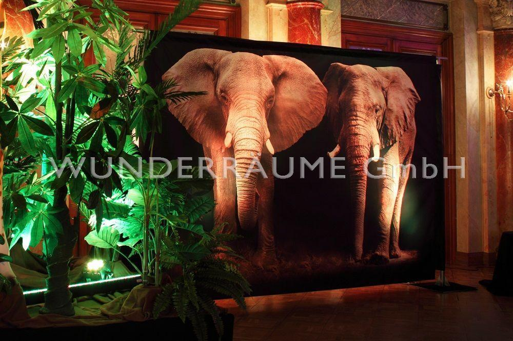 """Kulissen mieten & vermieten - Leinwanddruck """"Elefanten"""" in Lichtenstein/Sachsen"""