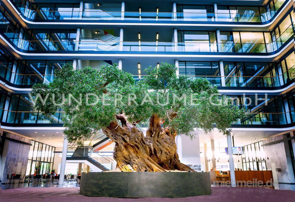 Kulissen mieten & vermieten - Olivenbaum XXL - WUNDERRÄUME GmbH vermietet: Dekoration/Kulisse für Event, Messe, Veranstaltung, Incentive, Mitarbeiterfest, Firmenjubiläum in Lichtenstein/Sachsen
