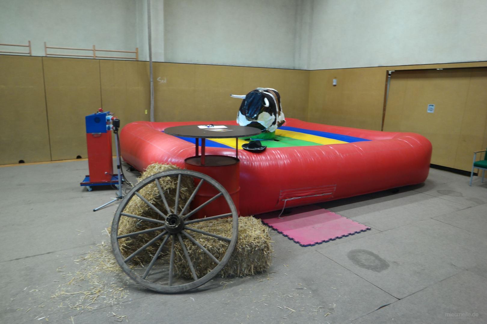 Riesenrutsche mieten & vermieten - Schweinereiten, Enten Rodeo, Bullriding mieten in Berlin