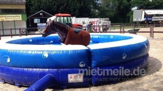 Bullriding mieten & vermieten - Horseriding / Pferdereiten  in Eibelstadt
