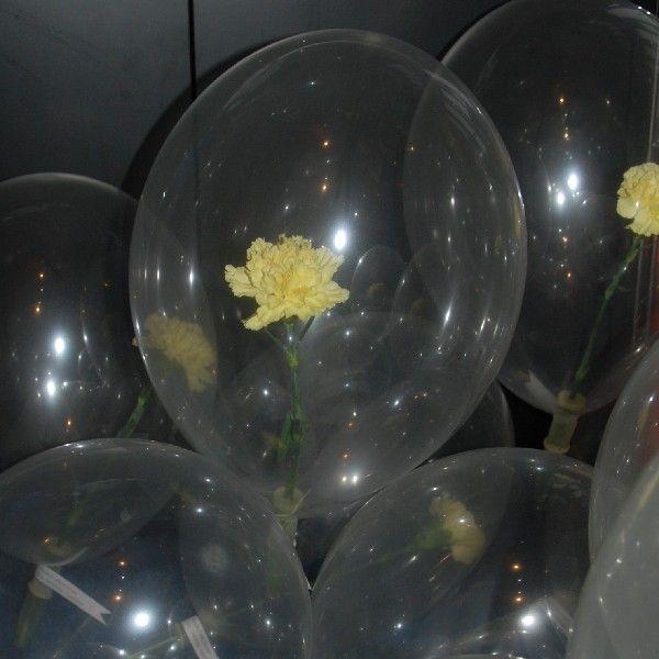 Ballons mieten & vermieten - Rose im Ballon inkl.19%MwSt. in Münnerstadt