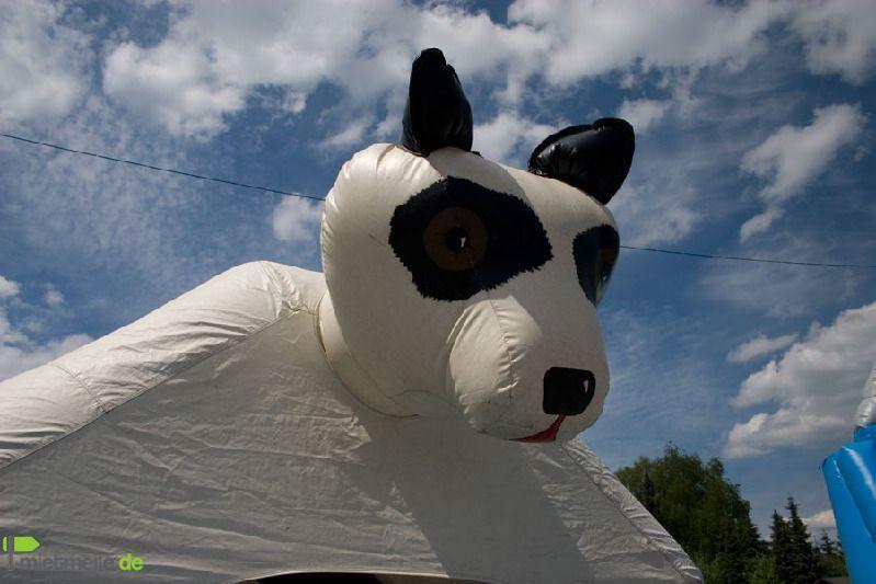 Hüpfburg mieten & vermieten - Hüpfburg Panda in Köln