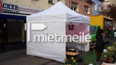 Pavillon/ Zelt/ Pavillonzelt 3x3m