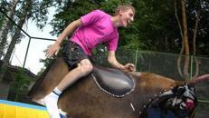 Rodeo Bullriding - SONDERANGEBOT - Profi Anlage!