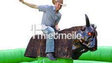 BAYERN- / OKTOBERFEST / WILD WEST PARTY