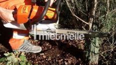 Stihl Benzin-Kettensäge Schnittlänge 40 cm