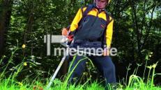 Stihl Motorsense / Freischneider