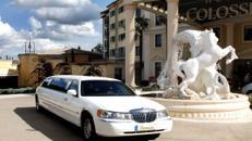 Erleben Sie puren Luxus in einer weißen Limousine