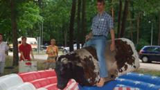 Bullriding zum mieten in Würzburg, Bad Neustadt