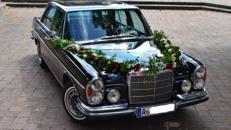 Hochzeitsfahrt Oldtimer Mercedes Augsburg+Umgebung