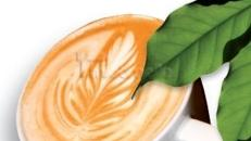 Kaffeebar, Kaffee, Bar, Catering, Event, Messe,