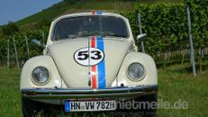 VW Käfer Oldtimer zum selber fahren