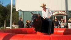 Bullriding, Rodeostier mieten Stuttgart