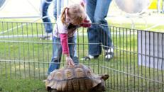 Rollender Zoo - Reptilienschau