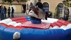 Bullriding, Funsport