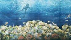 Korallenriff Kulisse, Krallen, Korallenriff, Riff, Unterwasser, Unterwasserwelt, Wasser, Meer, Ozean, Kulisse