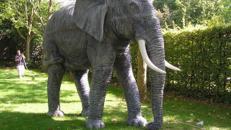 Elefant Figur XXL, Elefant, Afrika, Asien, Indien, Elefantenbulle, Stoßzähne, Stoßzahn, afrikanisch, asiatisch, indisch