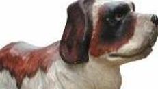 Bernhardiner Sennenhund Figur, Bernhardiner, Hund, Sennenhund, Figur, Tier, Haustier, Dekoration, Party, Event, Messe