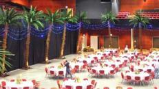 Palmen, Palme, Strand, Beach, Küste, Dekoration, Baum, Palmengewächse, Bahamas, Hawaii, Attrappen, Meer, Karibik, Event