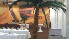 Palmen, Palme, Strand, Beach, Küste, Dekoration, Baum, Palmengewächse, Attrappen, Meer, Karibik, Hawaii, Bahamas, Event