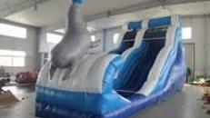 Wasserrutsche Seelöwe