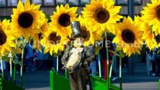 Sonnenblumen XL  -  Riesenblumen Sommer WUNDERRÄUME GmbH vermietet: Dekoration/Kulisse für Event, Messe, Veranstaltung, Incentive, Mitarbeiterfest, Firmenjubiläum