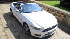 Mustang GT Cabrio zum Selberfahren