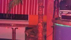 Kunstpflanze Palme 3,0m