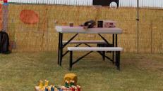 Skulpturen bauen aus Naturmaterialien / Basteln für Kinder / Kinderattraktion / Kinderevent / / inkl. Betreuer für bis zu 6 Stunden / inkl. Auf- und Abbau