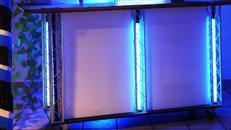 Tresen/Cocktailtresen/mobile Cocktailbar/Bartresen/Sektbar/Ausschanktresen mit LED Beleuchtung