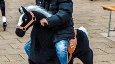 Animal Riding = Reiten auf mechanischen Tieren