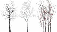Kleindekoration Winter (7-teilig) - WUNDERRÄUME GmbH vermietet: Dekoration/Kulisse für Event, Messe, Veranstaltung, Incentive, Mitarbeiterfest, Firmenjubiläum