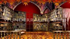 Große Bibliothek - WUNDERRÄUME GmbH vermietet: Dekoration/Kulisse für Event, Messe, Veranstaltung, Incentive, Mitarbeiterfest, Firmenjubiläum