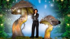 Pilze groß, Pilzset Maronen (4 Pilze) - WUNDERRÄUME GmbH vermietet: Dekoration/Kulisse für Event, Messe, Veranstaltung, Incentive, Mitarbeiterfest, Firmenjubiläum