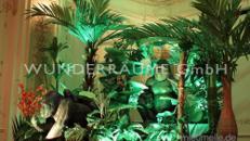 Dschungeltiere - WUNDERRÄUME GmbH vermietet: Dekoration/Kulisse für Event, Messe, Veranstaltung, Incentive, Mitarbeiterfest, Firmenjubiläum