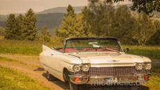 Cadillac Cabrio Creme weiss Mietwagen Hochzeitsauto Oldtimer mit Verdeck