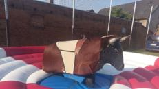 American Bullriding / Rodeo