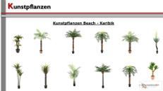 Pflanzen / Kunststoffpflanzen
