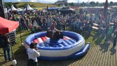 Rodeo-Bull-Riding