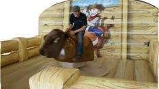 Bullriding Rodeo Stier inkl. 4 Stunden Aktionszeit und Transport in ganz NRW